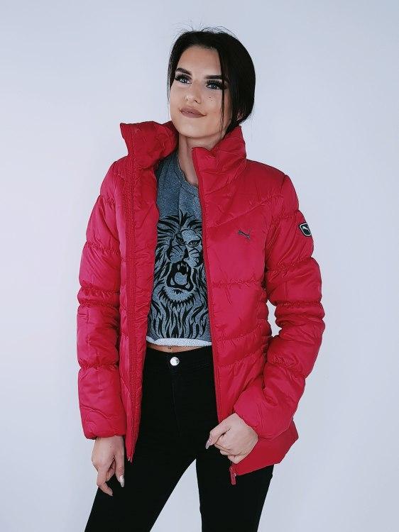 Puma jaka