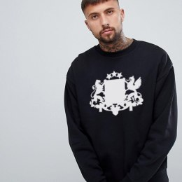 Latvijas Valsts džemperis